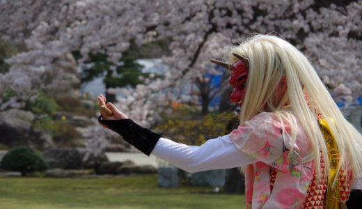 花の島佐渡!いたるところで開花です!