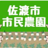 【離島移住】佐渡市市民農園