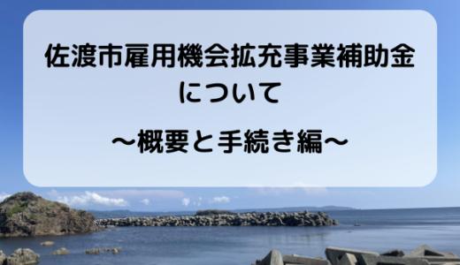 【補助金】有人国境離島補助金について ~概要・手続き編~